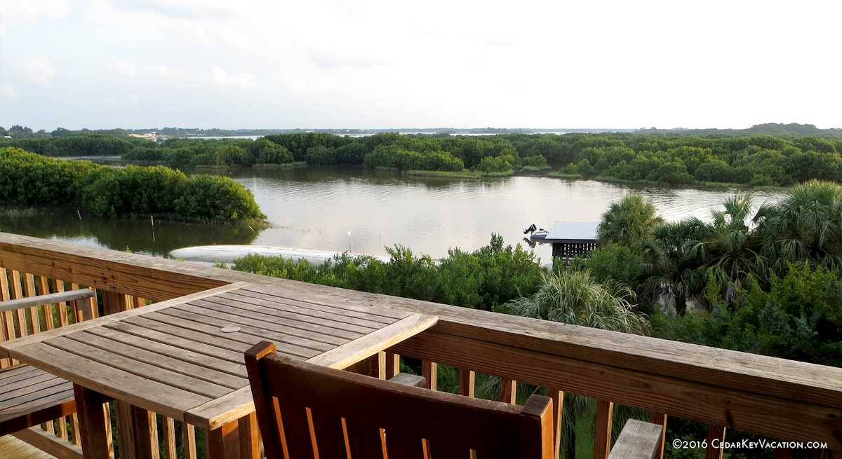 Amazing Cedar Key Fl Vacation Rental Condo By Owner No Booking Home Interior And Landscaping Transignezvosmurscom